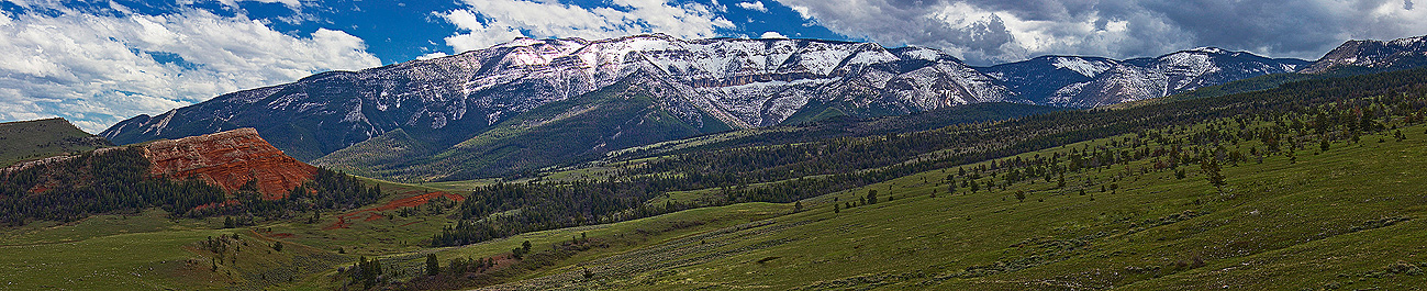 Image Between Buffalo and the North East entrance to Yellowstone National Park Wyoming USA